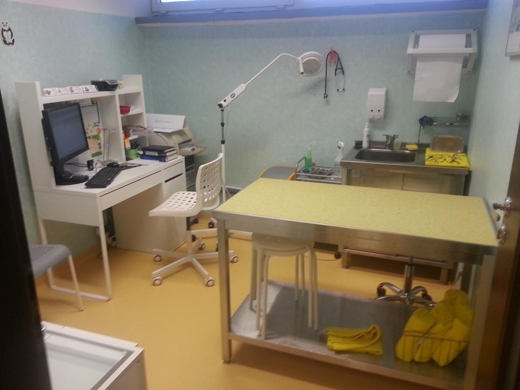 ukladanie-wykladziny-na-scianach-i-podlodze-w-klinice-weterynaryjnej-12