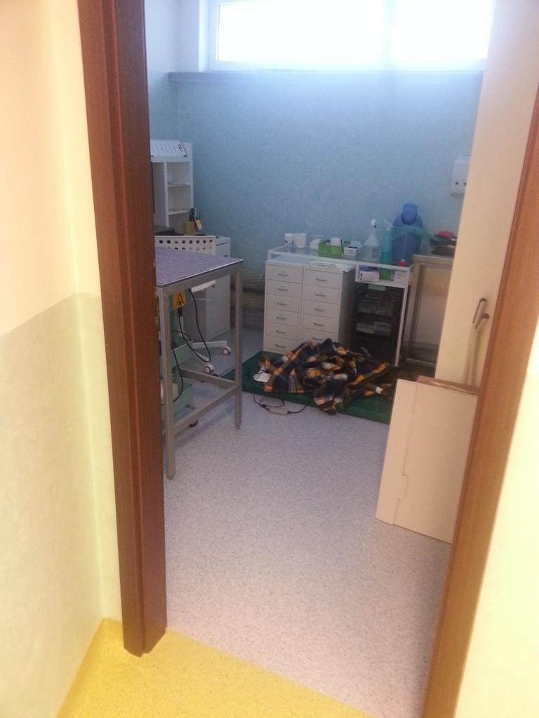 ukladanie-wykladziny-na-scianach-i-podlodze-w-klinice-weterynaryjnej-15